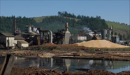 Saw-mills has often also kiln and drying facilities.